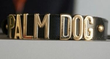dogman10