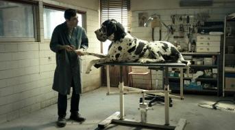 dogman3