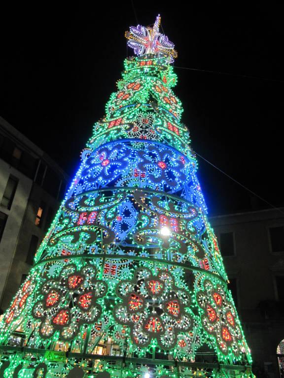 albero-di-natale-498126